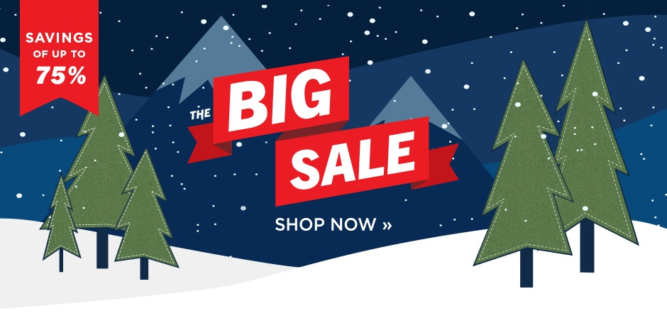 The Big Sale 2019