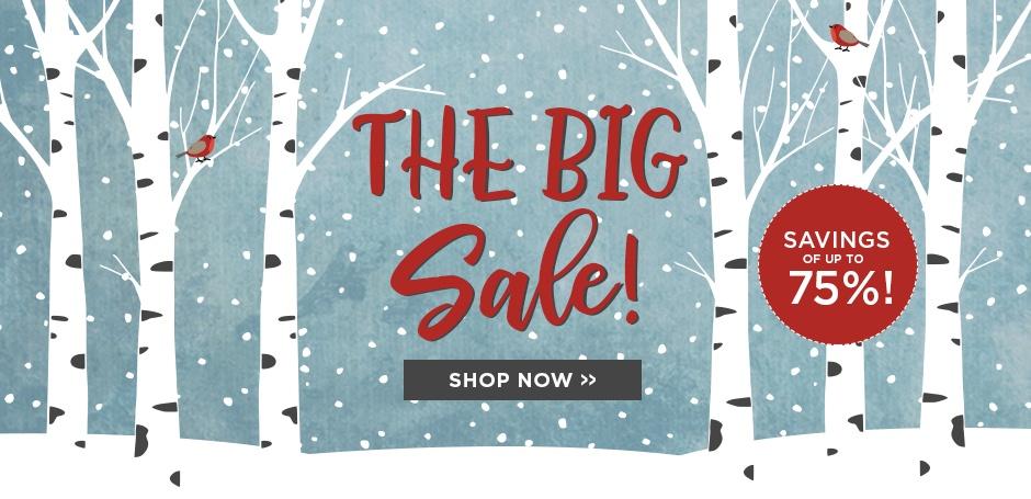 The Big Sale 2018